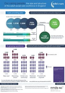 Size and Structure 2013 Infographic